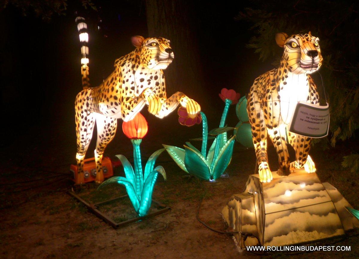 Chinese Magic Lights – Budapest Zoo & Botanical Garden – 2016 ...